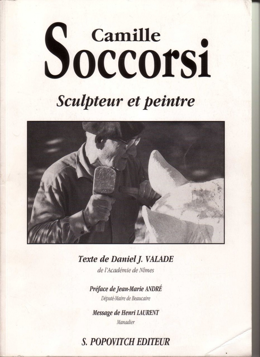 Read more about the article Documentation  SOCCORSI Camille